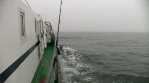 ZT NSZZP Legnica Rejs po rybkę 2017 (12)